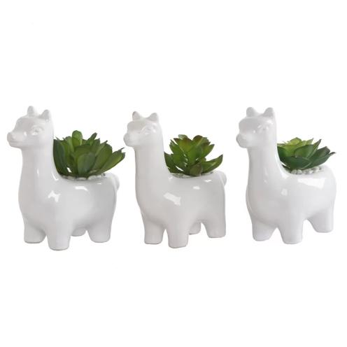 3+Piece+Llama+Gift+Desktop+Succulent+Plant+Set
